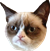 :grumpy: